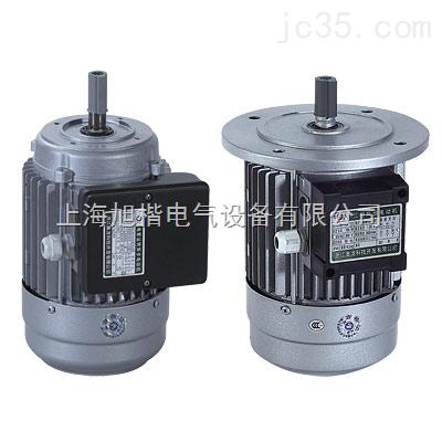 单向电容运转异步电动机yy7134 0.37 220 1400