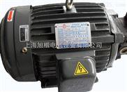 供应卧式电机 定量叶片泵组/电机油泵组合-卧式电机,液压部件