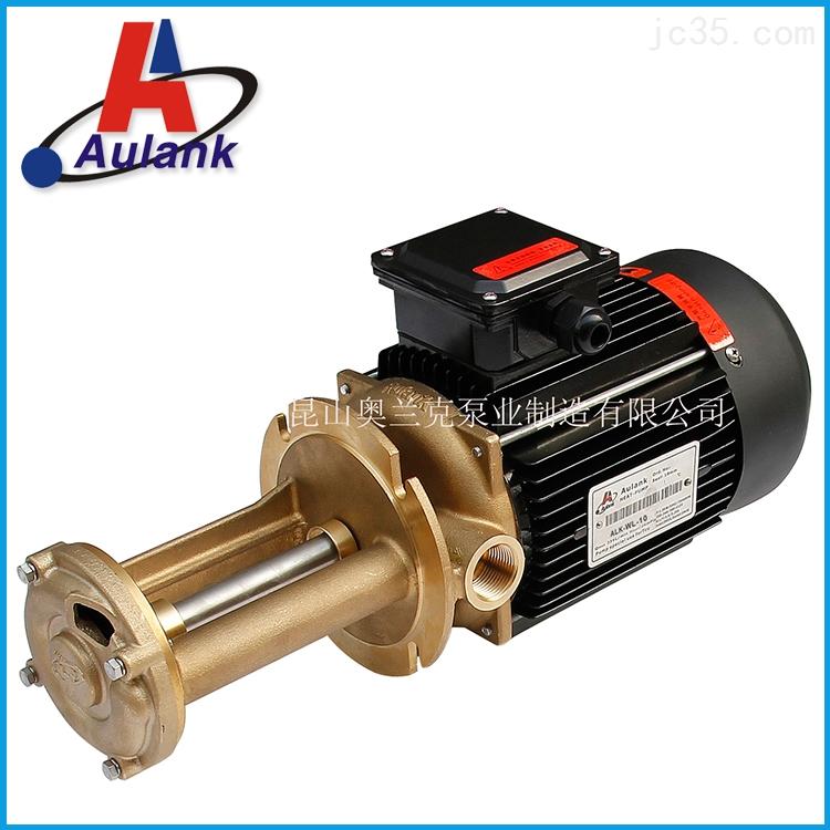 橡胶注射成型高温热油泵