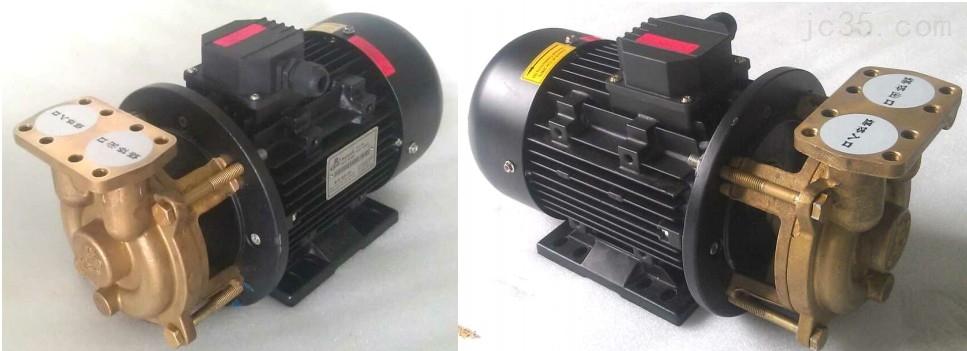 (司倍克款6091)高温热油泵